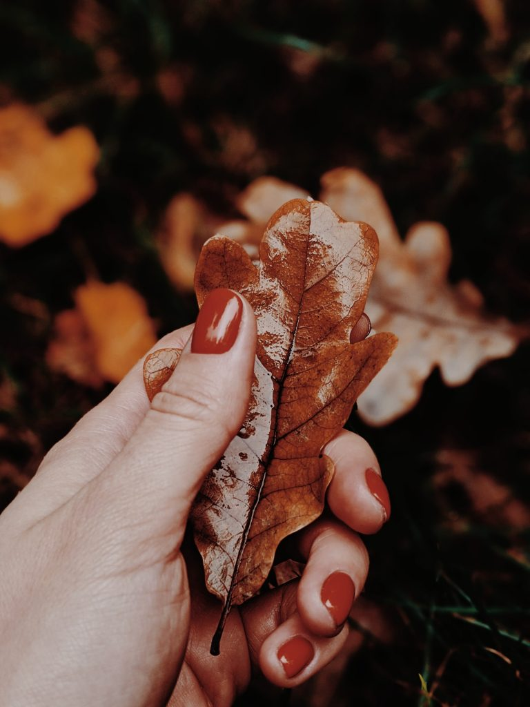 Autumn Is Here! Manicure Ideas To Add To Your Collection During This Season.